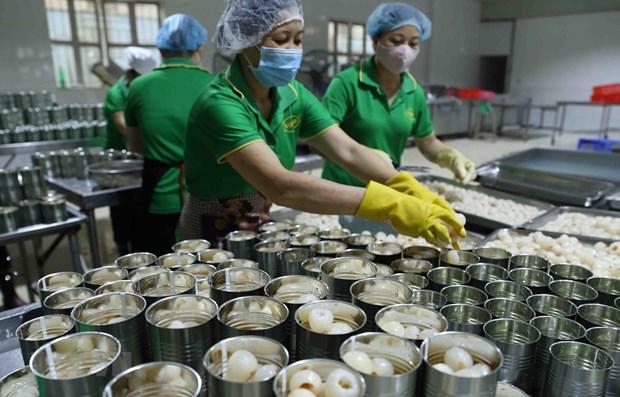 Accelerer la quarantaine vegetale des fruits exportes vers les Etats-Unis hinh anh 1