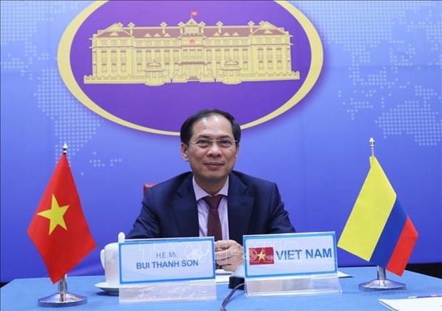 Vietnam – Colombie: 5e consultation politique au niveau des vice-ministres hinh anh 1