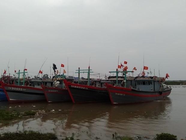 La tempete Nangka a touche le golfe du Bac Bo le 14 octobre hinh anh 1