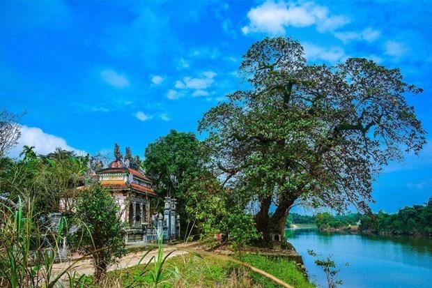 Decouvrir la beaute de l'ancien village de Phuoc Tich hinh anh 1