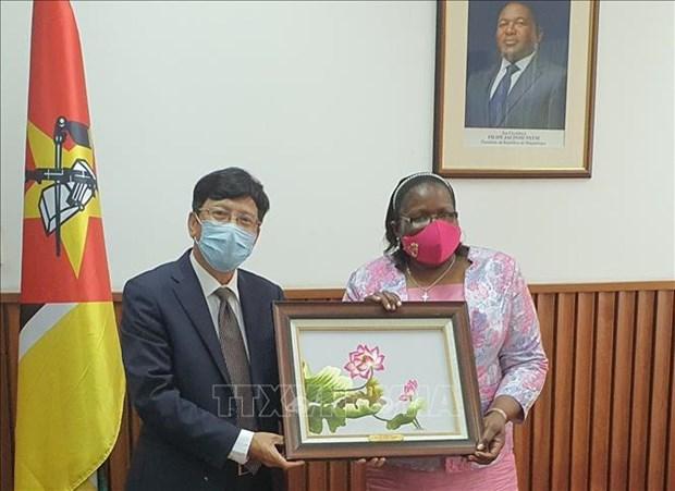 Le Mozambique felicite le Vietnam pour son double role en 2020 hinh anh 1