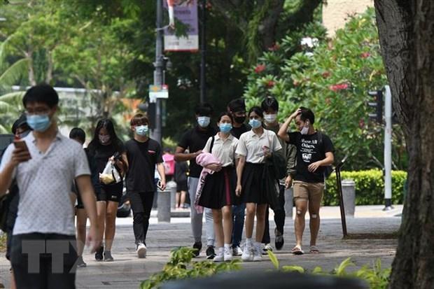 Singapour envisage un couloir de voyage destine aux voyageurs d'affaires en sejour de courte duree hinh anh 1