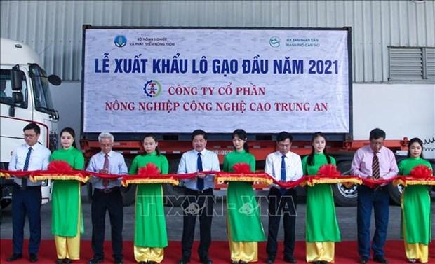 Le Vietnam exportera 1 600 tonnes de riz a prix eleves vers Singapour et la Malaisie hinh anh 1