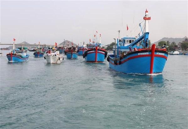 Mer et iles : Ca Mau et sa strategie de developper l'economie maritime hinh anh 2