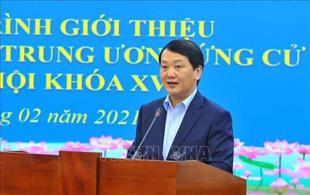 Elections legislatives: de nombreuses opportunites pour les candidats « auto-designes » hinh anh 1