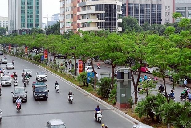 Le Vietnam lance son plan visant a planter un milliards d'arbres hinh anh 2