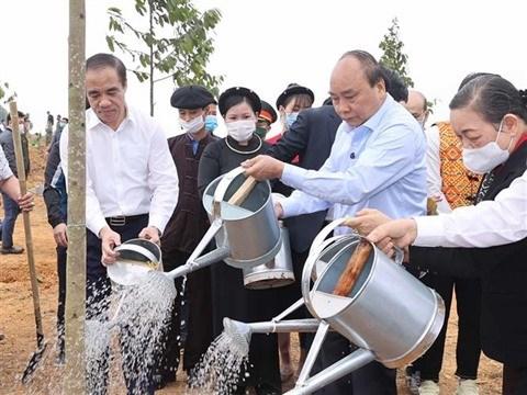 Le Vietnam lance son plan visant a planter un milliards d'arbres hinh anh 1