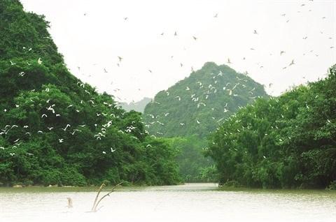 Le site ecologique du jardin aux oiseaux de Thung Nham a Ninh Binh hinh anh 1