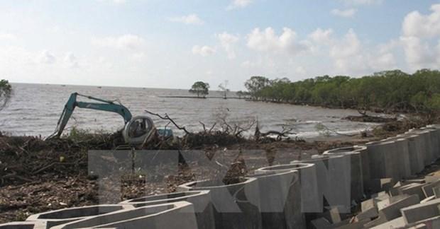 Planification de l'espace maritime et amelioration de l'ecosysteme cotier du delta du Mekong hinh anh 1