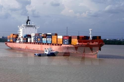 Plus de 478 millions de tonnes de marchandises ont transite via les ports maritimes en 11 mois hinh anh 1