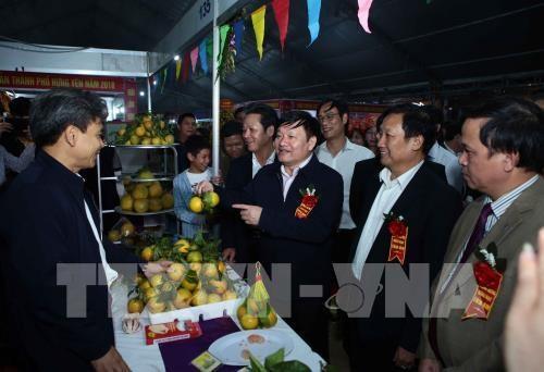 La 2e fete des oranges de Hung Yen hinh anh 1