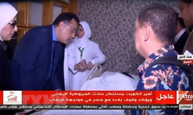 Plusieurs pays condamnent l'attentat a la bombe en Egypte hinh anh 1