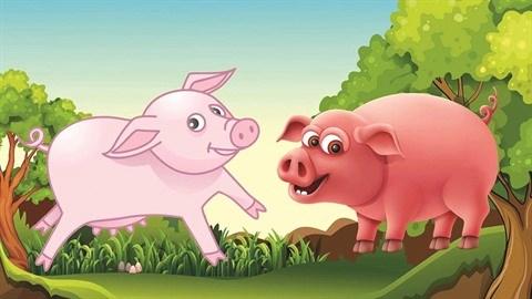 Le cochon du paysan hinh anh 1