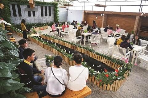 Le delta du Mekong offre un fort potentiel de developpement de l'agrotourisme hinh anh 1