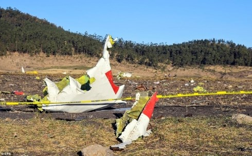 Accident d'un avion ethiopien : message de sympathie du Vietnam hinh anh 1
