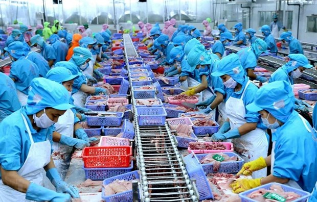 Le Vietnam, quatrieme exportateur mondial de produits aquatiques hinh anh 1