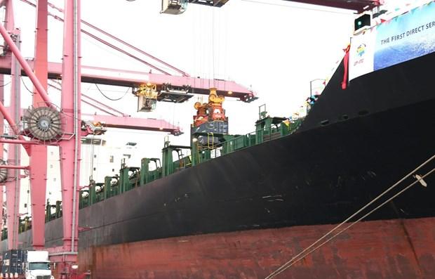 Ho Chi Minh-Ville accueille le plus gros porte-conteneurs hinh anh 1