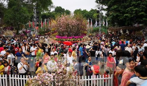 La fete des fleurs de cerisier Japon - Hanoi 2019 se prolonge hinh anh 1