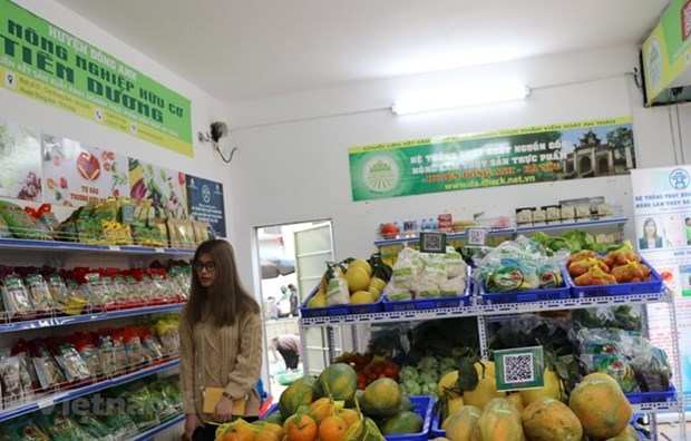 Ho Chi Minh-Ville : l'IPC en hausse de 0,11% hinh anh 1