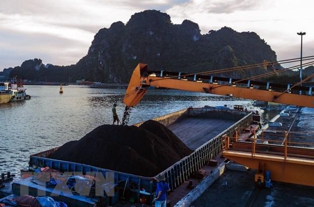 Vinacomin produit 14,86 millions de tonnes de charbon brut depuis janvier hinh anh 1