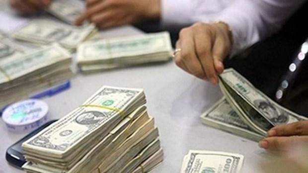 Le Vietnam investit 150 millions de dollars a l'etranger en quatre mois hinh anh 1