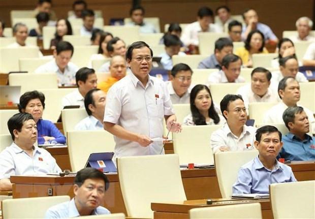 AN: les deputes votent sur trois lois et discutent de deux projets de loi hinh anh 1