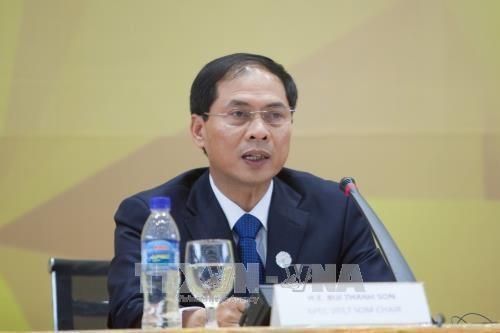 Le vice-ministre des AE Bui Thanh Son parle des contributions du Vietnam au Sommet du G20 hinh anh 1