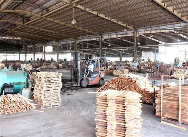 EVFTA: opportunites de developpement durable pour la filiere bois du Vietnam hinh anh 1