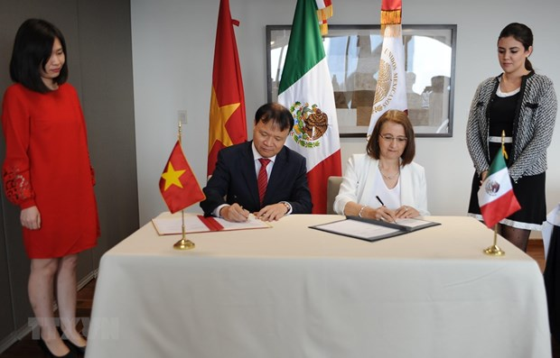 La 2e reunion du Comite mixte Vietnam-Mexique sur la cooperation economique hinh anh 1