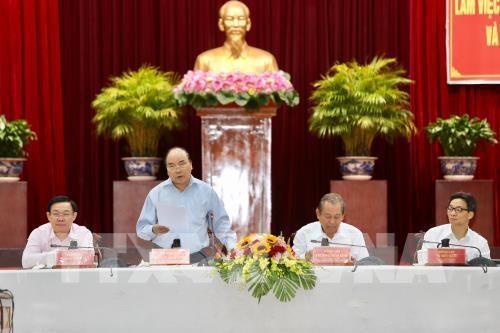 Pour le 13e Congres national du Parti : reunion avec les localites du delta du Mekong hinh anh 1