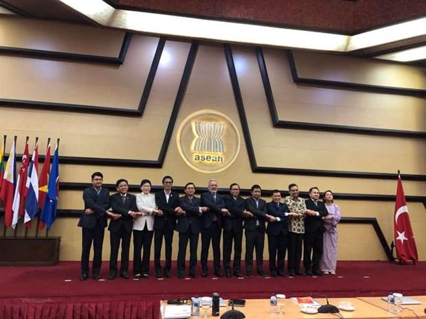 ASEAN et Turquie definissent les domaines de cooperation prioritaires pour 2023 hinh anh 1