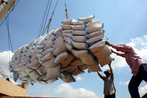 Les exportations du riz evaluees a plus de 4 millions de tonnes en sept mois hinh anh 1