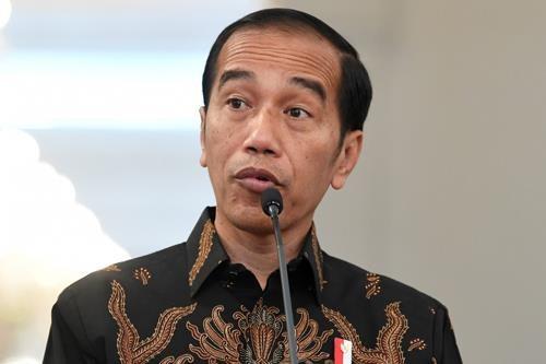 Le president indonesien annonce le site de la nouvelle capitale pour remplacer Jakarta hinh anh 1