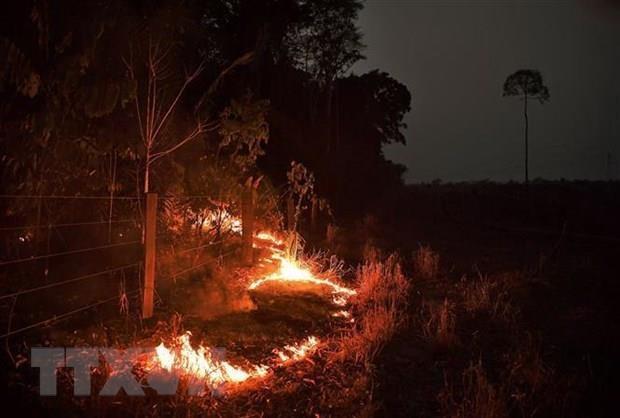 Feux de foret : plus de 2.500 points chauds localises en Asie du Sud-Est hinh anh 1