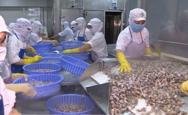 Les exportations de produits aquatiques vers la Chine devraient atteindre 1,2 mld de dollars en 2019 hinh anh 1