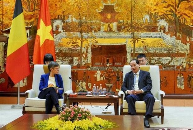 Renforcement de la cooperation entre Hanoi et la province belge d'Anvers hinh anh 1
