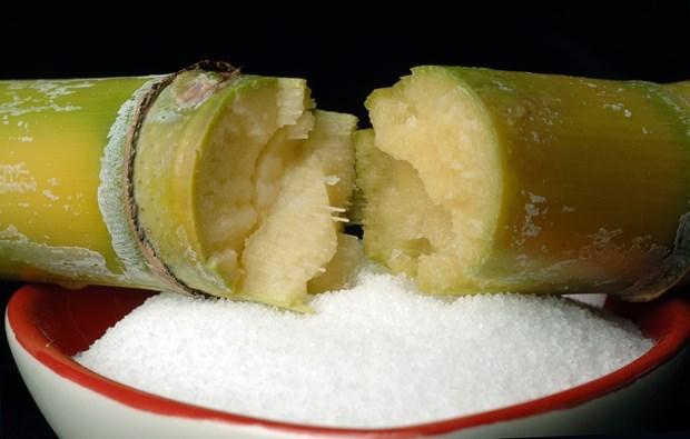 Le contingent tarifaire ne s'appliquera pas aux importations de sucre originaire de l'ASEAN hinh anh 1