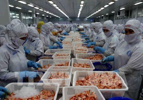 Les exportations de produits agricoles, sylvicoles et aquatiques en hausse de 3,6% en 11 mois hinh anh 1