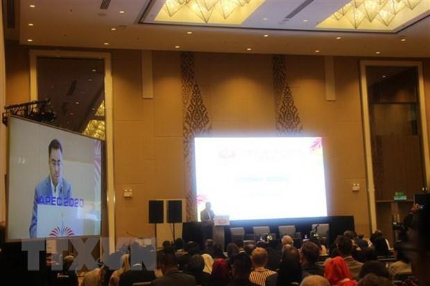 Annee APEC 2020 - focus sur le renforcement du commerce et de l'investissement hinh anh 1