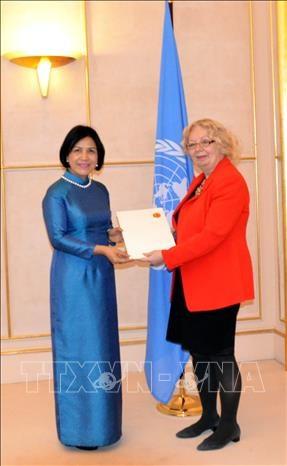 L'ambassadrice Le Thi Tuyet Mai rencontre la directrice generale du Bureau de l'ONU hinh anh 1