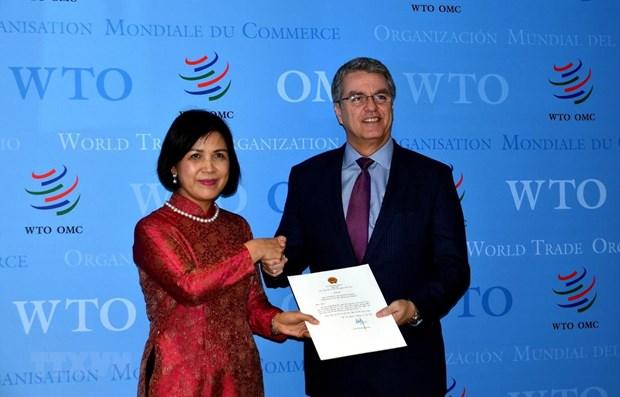Le Vietnam s'engage a collaborer etroitement avec l'OMC hinh anh 1