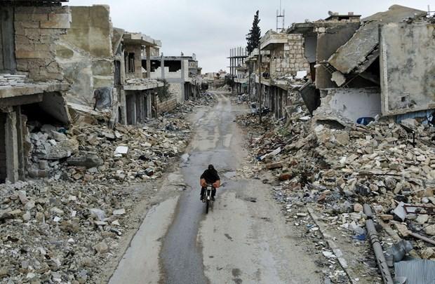 Le Vietnam soutient la recherche d'une solution politique pour la Syrie hinh anh 1