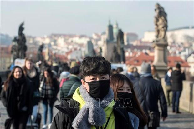 Des Vietnamiens en R. tcheque et R. de Coree s'unissent dans la lutte contre l'epidemie de COVID-19 hinh anh 1