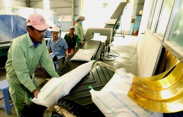 Le Myanmar exporte 1,64 million de tonnes de riz dans la premiere moitie de l'exercice 2019-2020 hinh anh 1