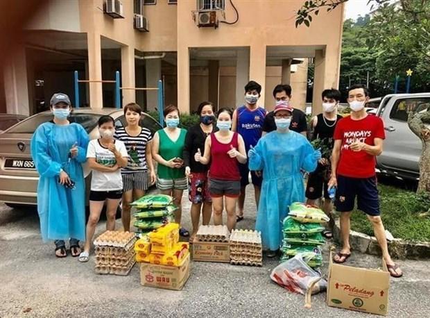 Conjuguer les efforts pour soutenir les Viet kieu en Malaisie hinh anh 1