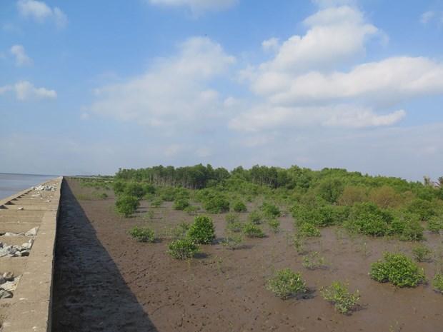L'UE et la France aident le Vietnam a lutter contre le changement climatique et le COVID-19 hinh anh 1