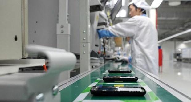 Les exportations ont atteint 8,22 milliards d'USD au cours de la premiere moitie de mai hinh anh 1