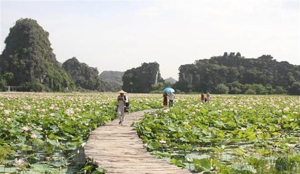 Le Vietnam continue de prendre des mesures de promotion du tourisme interne hinh anh 1