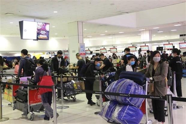 Rapatriement de 350 citoyens vietnamiens d'Australie hinh anh 1
