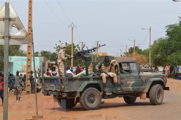 Le Vietnam soutient l'independance, la souverainete et l'integrite territoriale du Mali hinh anh 1